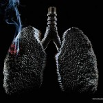Clever-and-Creative-Antismoking-ads-adesf-lungs
